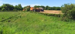 farm-field